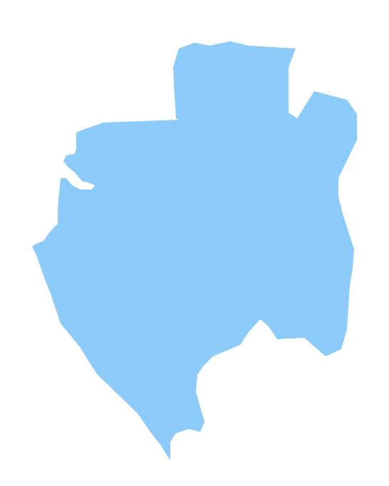 Geo Map - Africa - Gabon