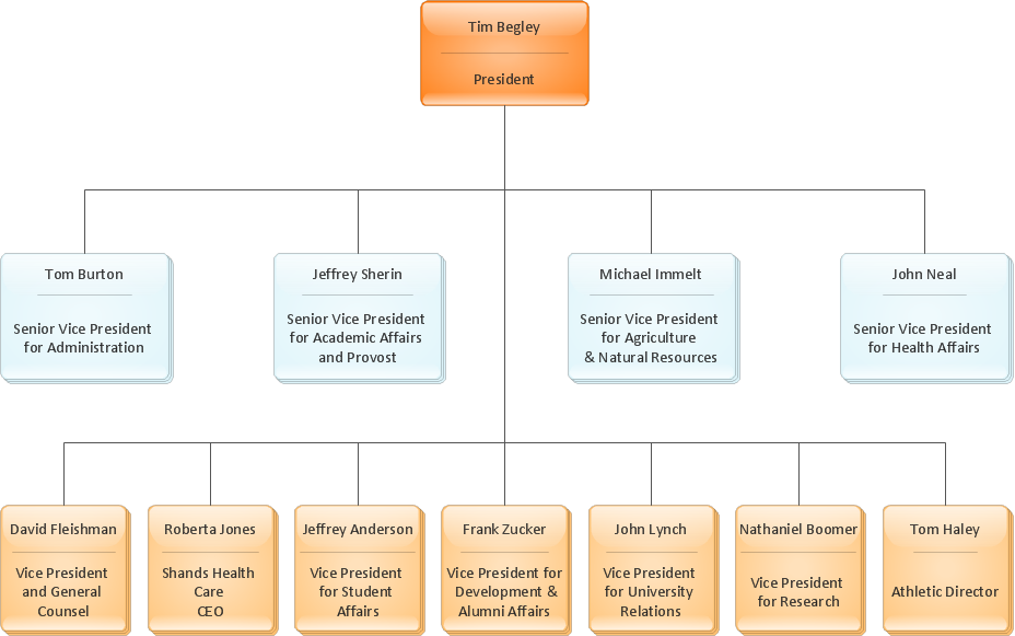 Organization chart - University
