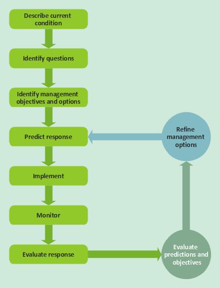 Quality Management System Tqm