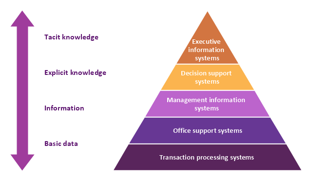 5 Level Pyramid Model Diagram Information Systems Types