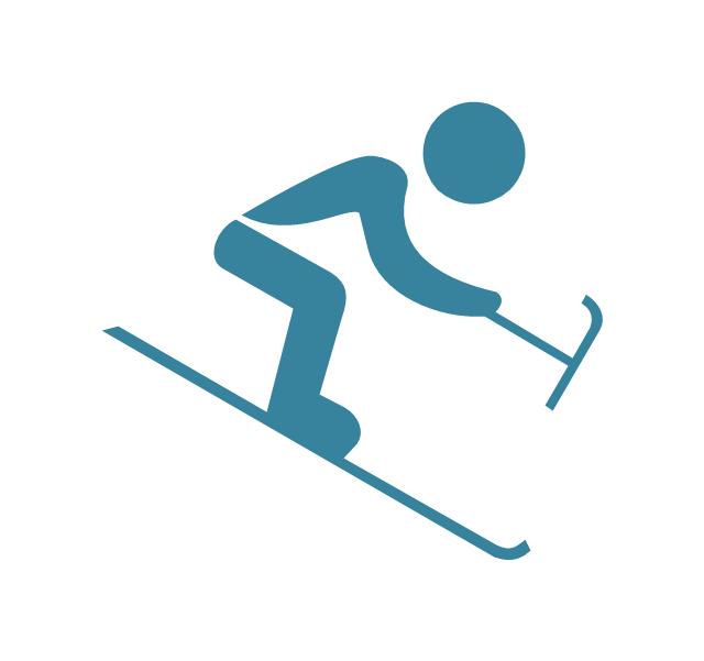 Paralympic alpine skiing,  paralympic alpine skiing