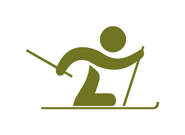 Paralympic cross-country skiing,  paralympic cross-country skiing