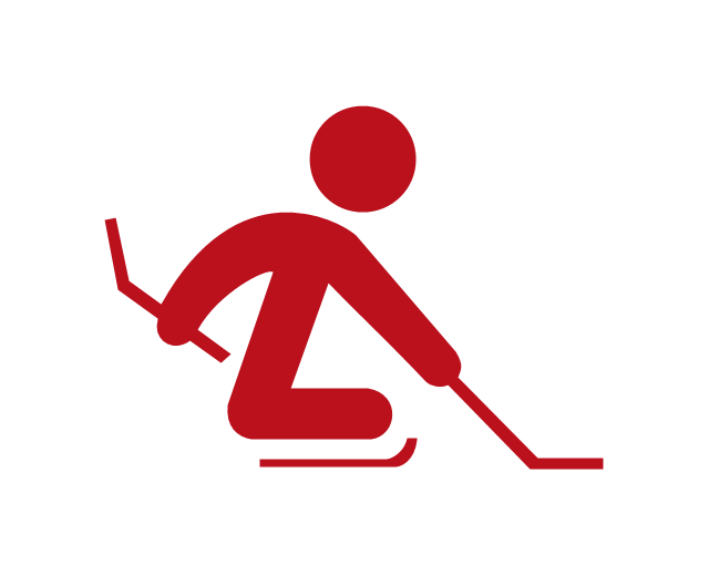 Ice sledge hockey, ice sledge hockey,