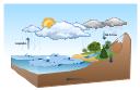 Vector illustration, tree, sunny, snow, rain, overcast, cloud, ocean, sea,