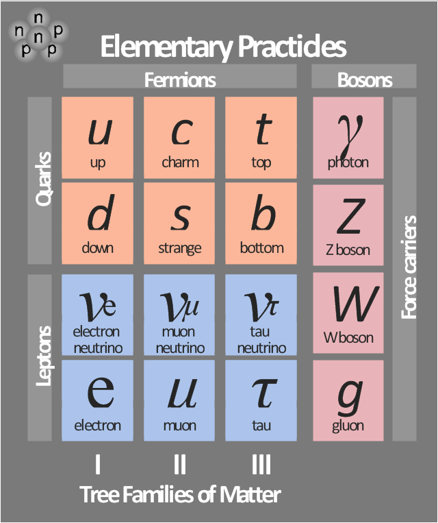Fundamental matter particle types,