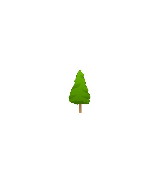 Fir tree, fir tree,