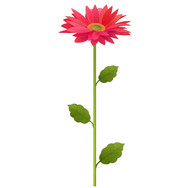 Flower, flower,