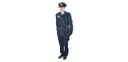 Customs officer, customs officer,