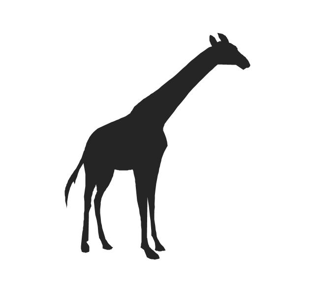 Giraffe, giraffe,
