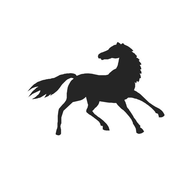 Horse, horse,