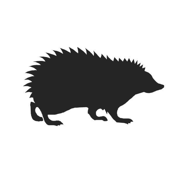 Hedgehog, hedgehog,