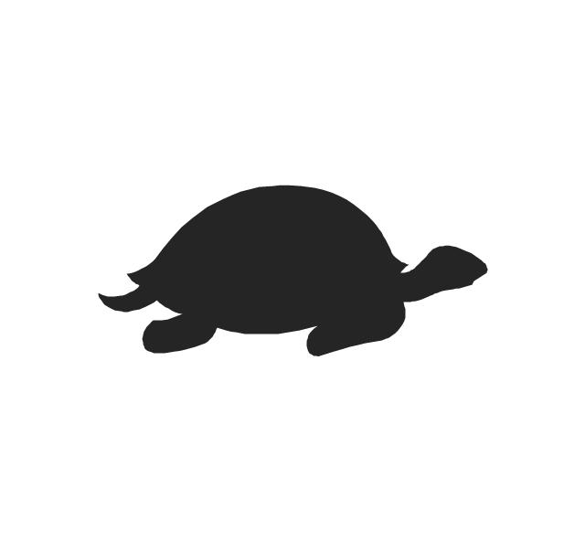 Turtle, turtle,