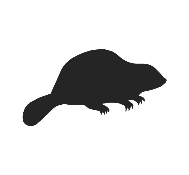 Beaver, beaver,