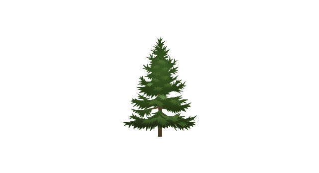 Conifer tree, tree,