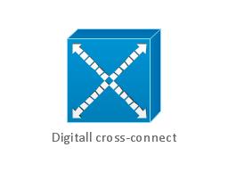 Digitall cross-connect, digital cross-connect,
