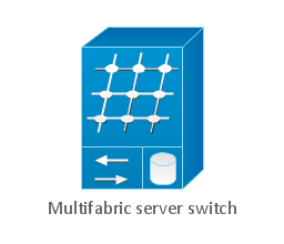 Multifabric server switch, multifabric server switch,