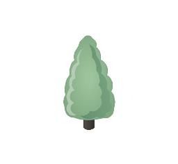 Conifer tree, fir-tree,
