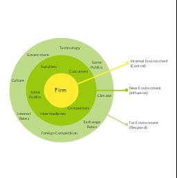 Macro-micro environmental forces diagram (prompt), target, macro-micro environmental forces,