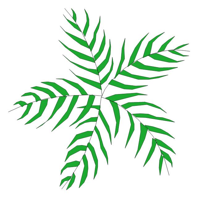 Palm tree, palm tree,