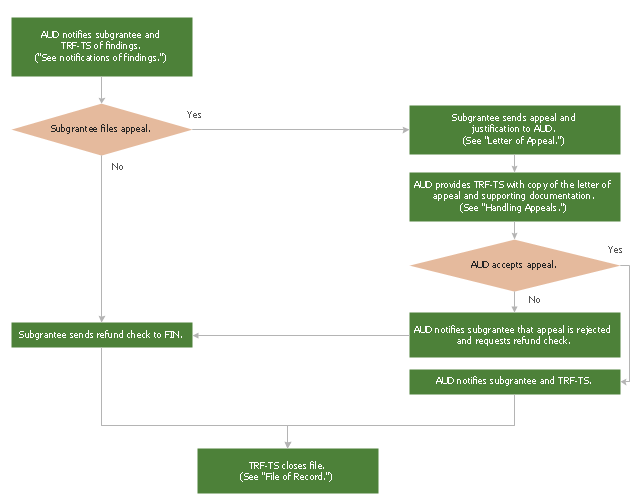 Audit flowchart, process, decision,
