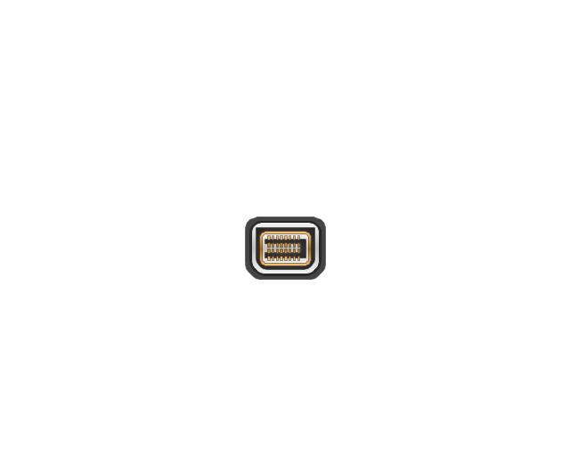 Mini DVI jack,