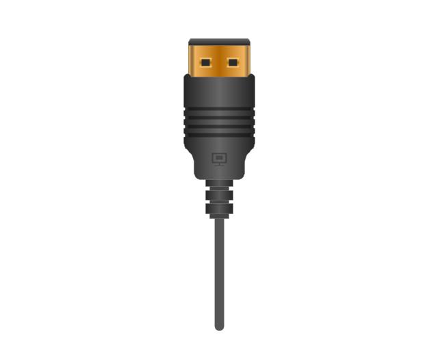 Display Port plug, display port, plug, connector,