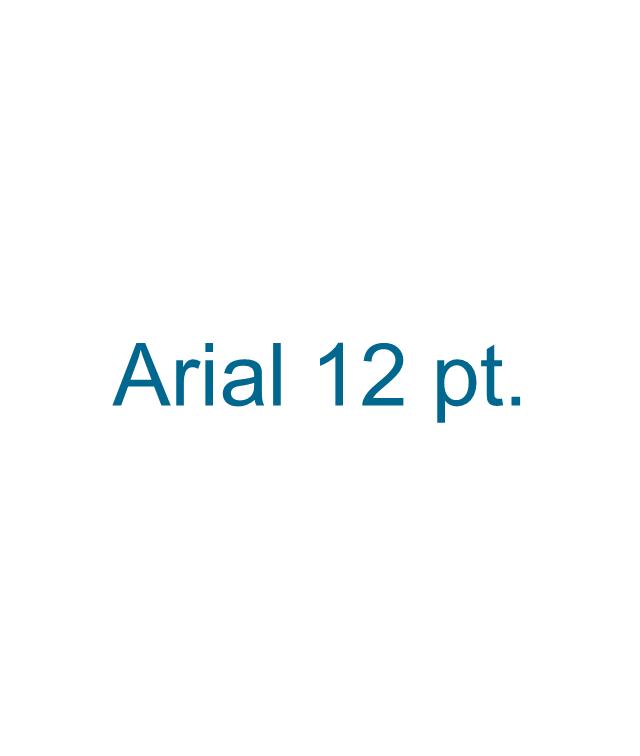 12 pt Arial text block,