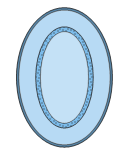 Oval Blue Rug, oval, blue, rug,