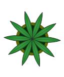 House Plant, house plant, potted plant,