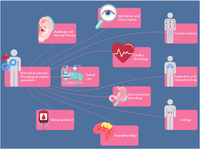 Healthcare infographic, vision science, vascular science, urology, stadium, respiratory physiology, rectangle, perfusion, medical physiology, heart, gastrointestinal physiology, drawing shapes, critical care, clinical neurophysiology, cardiac physiology, audiology,