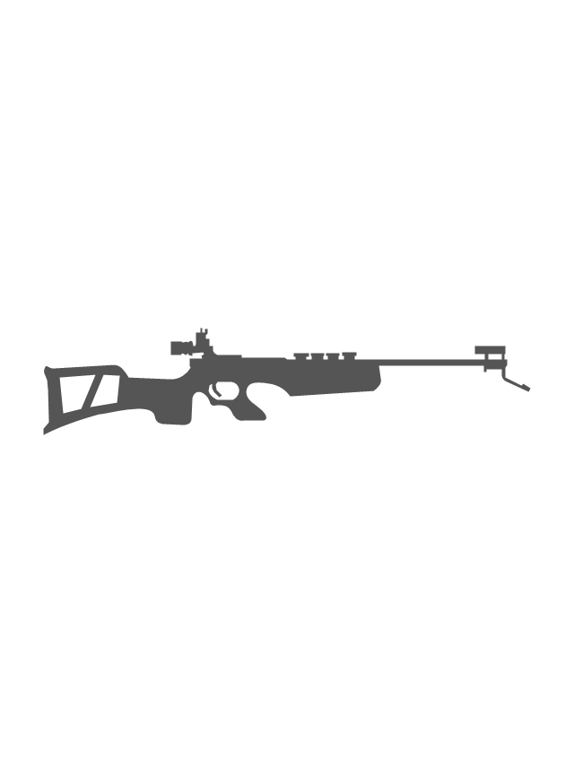 Biathlon rifle, biathlon rifle,