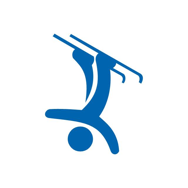 Freestyle skiing, freestyle skiing,