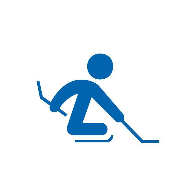 Ice sledge hockey, ice sledge hockey,