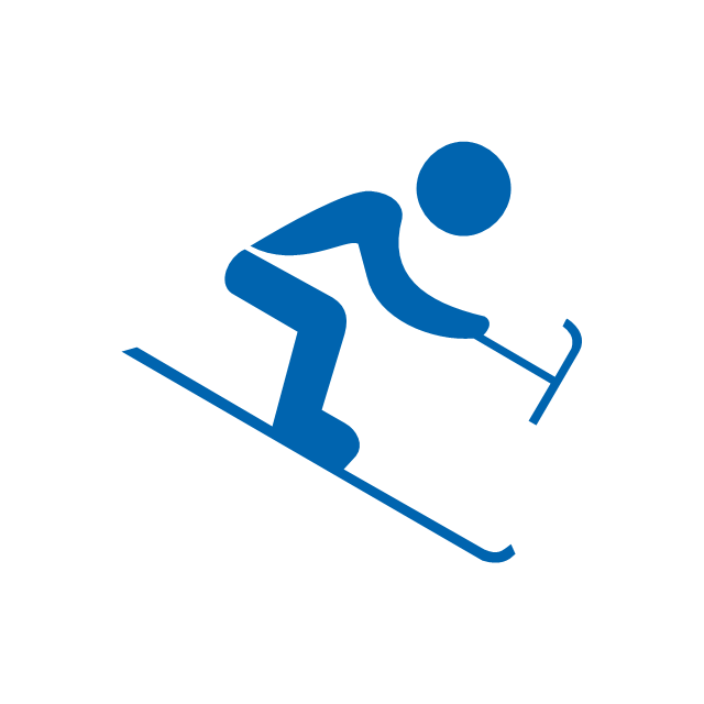 Alpine skiing, paralympic, paralympic alpine skiing,