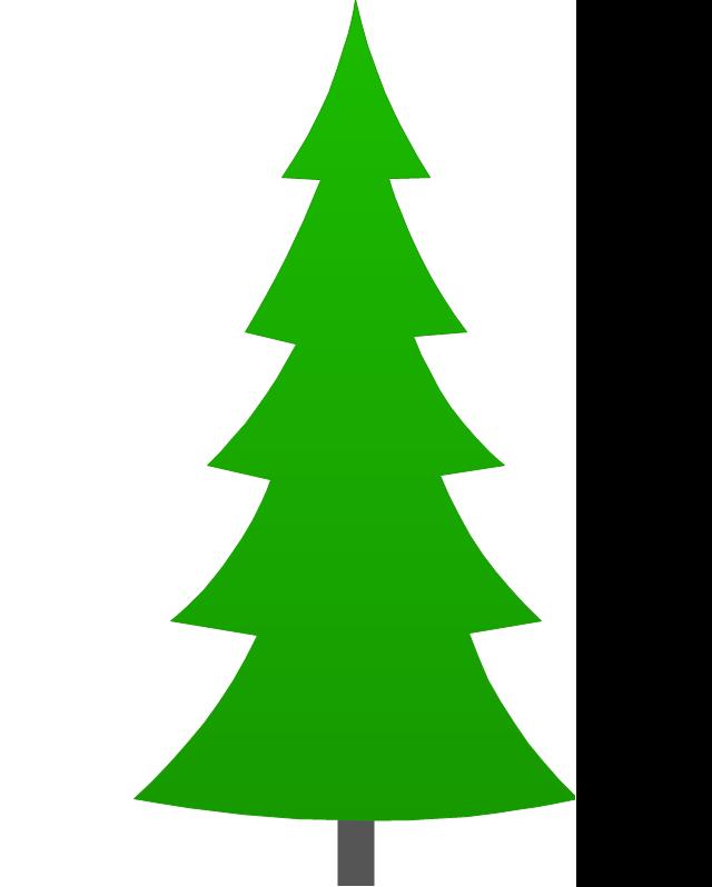 Fir-tree, fir-tree,
