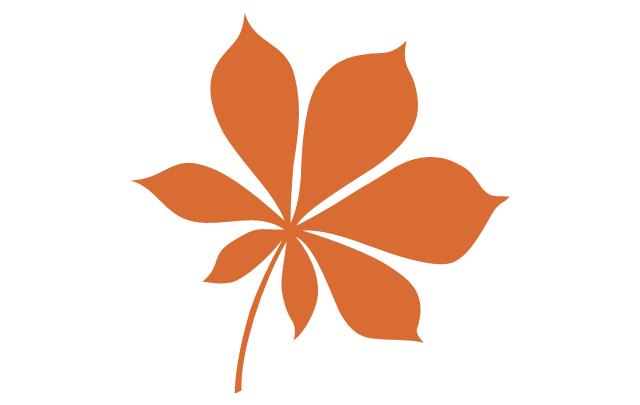 Tree leaf - chestnut, chestnut tree leaf,