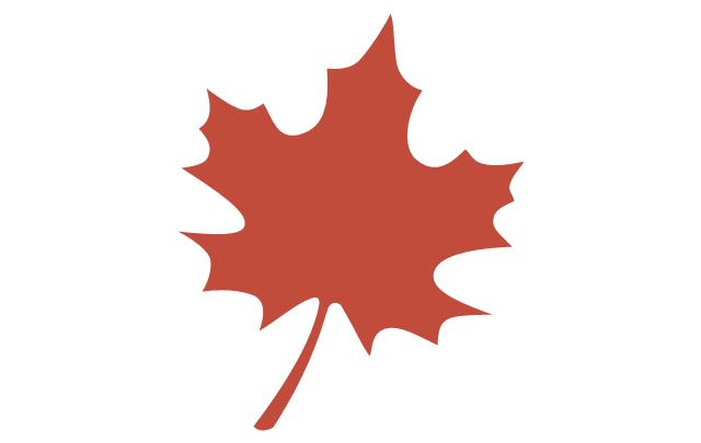 Tree leaf - maple, maple tree leaf,