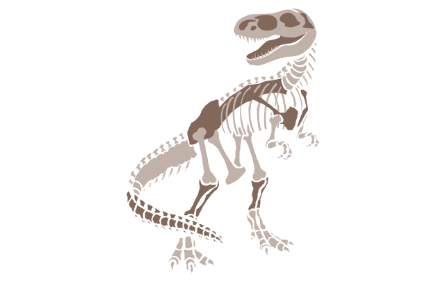 Dinosaur skeleton, dinosaur skeleton,