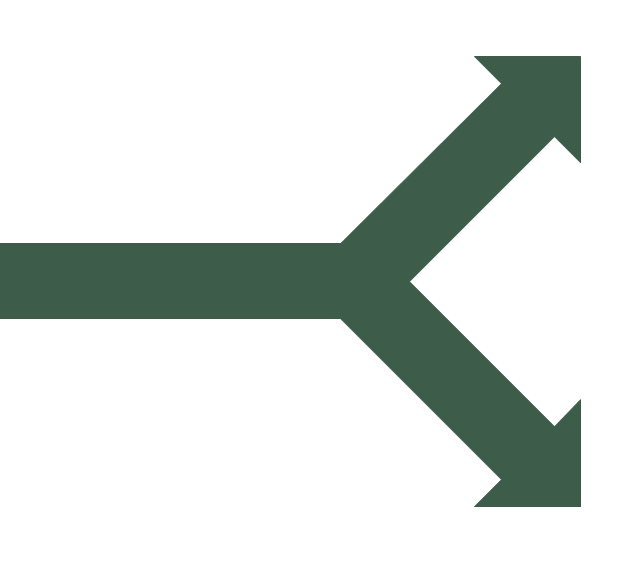Split arrow, split arrow,