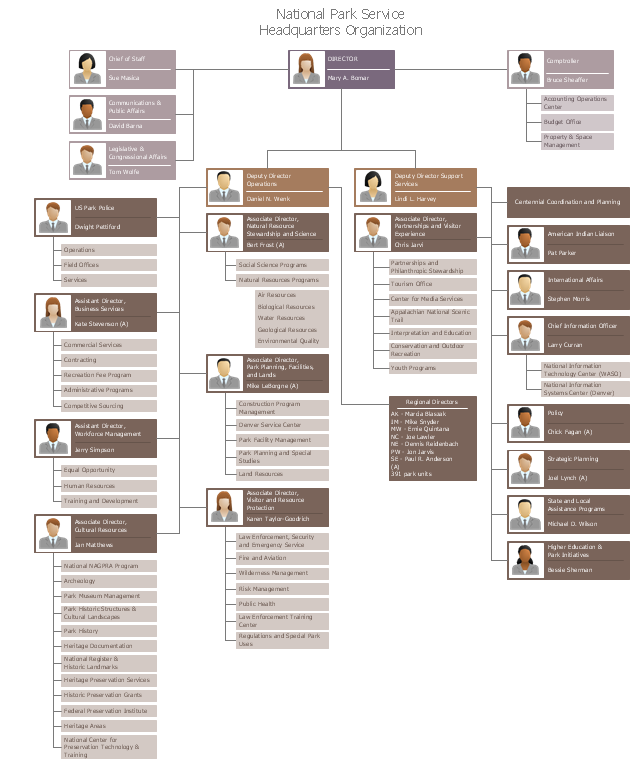 Org chart, position, manager, executive,