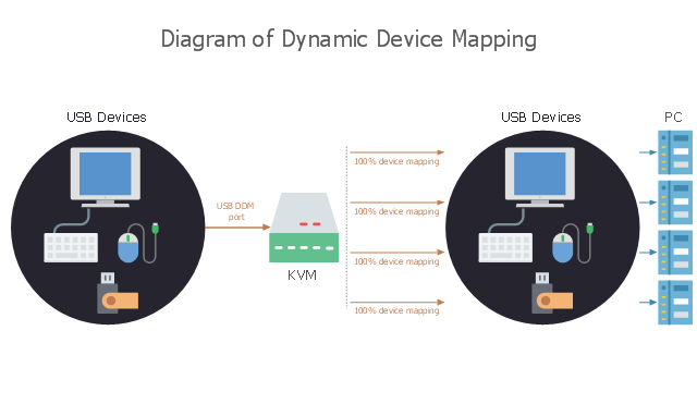 Computer diagram, usb computer mouse, rack, lcd screen, keyboard, flash drive, bluetooth device, modem,