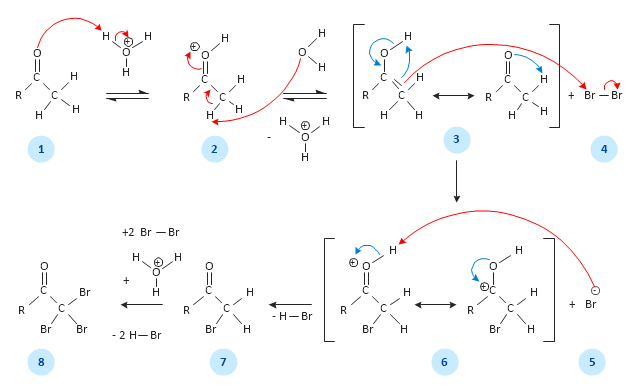 Alpha halogenation of aldehydes and ketones, reaction arrows, reversible reaction, plus, minus, hydrogen, H, bond, covalent bond, double bond,