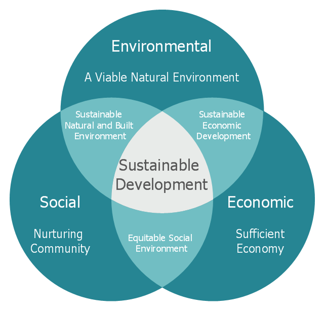 Sustainability essay